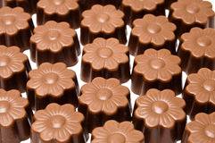 Daisy shaped chocolate assortment Stock Photos
