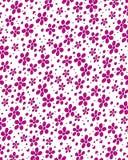 Daisy Stamp Deep Pink Imagen de archivo libre de regalías