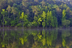 Daisy State Park. Water reflecting trees at Daisy State Park in Kansas. United States stock photography