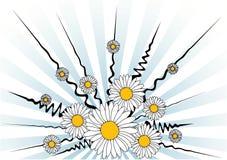 daisy tła wektora ilustracji
