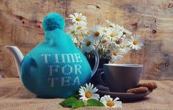 Daisy tea Royalty Free Stock Images