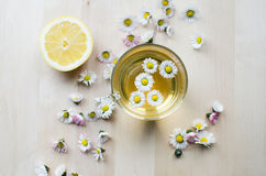 Daisy tea Stock Photos