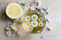 Daisy tea Stock Photo