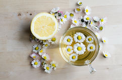 Daisy tea Stock Photography