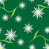 Daisy Tile Stock Photos