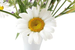 Daisy and Vase Stock Photos