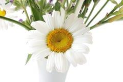 Daisy and Vase stock photos
