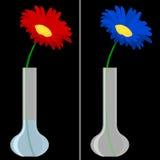 Daisy in vase on black Stock Photography