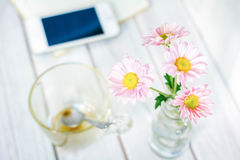 Daisy in vase on the desk. Stock Photography