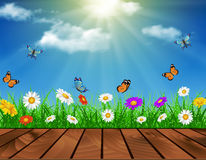 Daisy vector background summer design Stock Photos