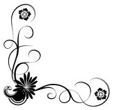 Daisy and vines. Illustration drawing of beautiful black daisy flower and vines royalty free illustration