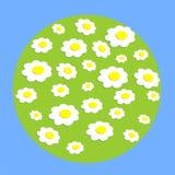 Daisy wheel flowers on globe Stock Photos