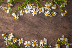 Daisy white flower and bas ket of flower on vintage Stock Photos
