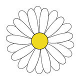 Daisy. White daisy flower vector illustration, daisy blossom hand drawing icon isolated on transparent background royalty free illustration