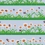 Daisy white horizontal seamless pattern Royalty Free Stock Images