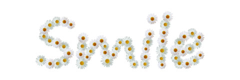 Daisy Word Smile. Word made from real daisy flowers Stock Images