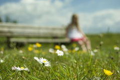 Daisy and a young girl sitting on a bench Stock Images