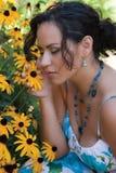 daisy zapach Zdjęcie Royalty Free