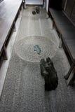 Daitokuji di Kyoto immagini stock