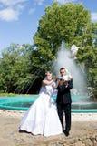 daj wolności gołębie white Zdjęcie Royalty Free