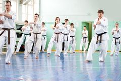 daje karate lekci mistrza Obrazy Royalty Free