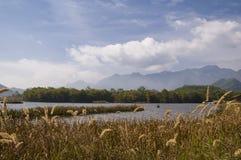 Dajiuhu-Sumpfgebiete lizenzfreie stockbilder