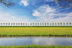 Dajk z rzędem drzewa w Beemster polderze fotografia stock