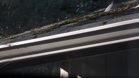 Dak dat met een bladventilator wordt geblazen stock video