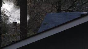 Dak en schoorsteen van cabine die rook los in bos laten stock video