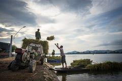 Dak Lak,越南- 2016年10月22日:农夫从浮动小船装载被收获的米由运输车决定在Lak区 库存照片