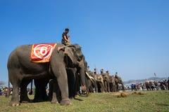 Dak Lak,越南- 2017年3月12日:大象站在队中在种族面前在赛跑的节日由Lak湖在Dak Lak,中心hig 免版税库存照片