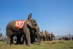 Dak Lak,越南- 2017年3月12日:大象站在队中在种族面前在赛跑的节日由Lak湖在Dak Lak,中心hig 免版税库存图片