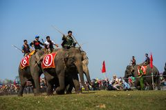 Dak Lak,越南- 2017年3月12日:由Lak湖的大象赛跑的节日在Dak Lak,越南的中心高地 库存图片
