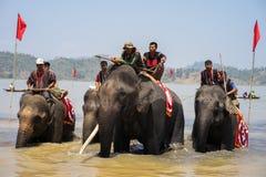 Dak Lak,越南- 2017年3月12日:赛跑在水节日的大象由Lak湖在Dak Lak,越南的中心高地 免版税库存图片