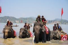 Dak Lak,越南- 2017年3月12日:赛跑在水节日的大象由Lak湖在Dak Lak,越南的中心高地 图库摄影