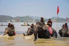 Dak Lak,越南- 2017年3月12日:赛跑在水节日的大象由Lak湖在Dak Lak,越南的中心高地 免版税库存照片