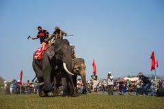 Dak Lak, Vietnam - 12 de marzo de 2017: Festival que compite con del elefante por el lago lak en Dak Lak, montaña de centro de Vi Foto de archivo libre de regalías