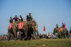 Dak Lak, Vietnam - 12 de marzo de 2017: Festival que compite con del elefante por el lago lak en Dak Lak, montaña de centro de Vi Imagen de archivo