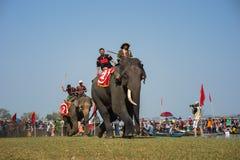 Dak Lak, Vietnam - 12 de marzo de 2017: Festival que compite con del elefante por el lago lak en Dak Lak, montaña de centro de Vi Foto de archivo