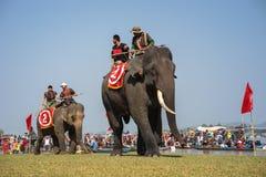 Dak Lak, Vietnam - 12 de marzo de 2017: Festival que compite con del elefante por el lago lak en Dak Lak, montaña de centro de Vi Fotos de archivo libres de regalías