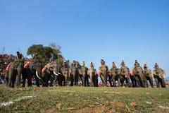 Dak Lak, Vietnam - 12 de marzo de 2017: Los elefantes defienden en línea ante la raza en el festival que compite con el lago lak  Foto de archivo libre de regalías