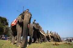 Dak Lak, Vietnam - 12 mars 2017 : Les éléphants se tiennent dans la ligne devant la course au festival de emballage à côté du lac Image libre de droits