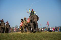 Dak Lak, Vietname - 12 de março de 2017: Festival de competência do elefante pelo lago lak em Dak Lak, montanhas center de Vietna Foto de Stock