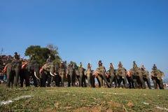 Dak Lak, Vietname - 12 de março de 2017: Os elefantes estão na linha antes da raça no festival de competência pelo lago lak em Da Foto de Stock