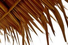 Dak met droge bladeren wordt gemaakt dat royalty-vrije stock foto's