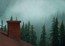 Dak met schoorsteen en nevelig bos stock foto's