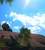 dak, rode rozen en blauwe hemel met wolken Stock Fotografie