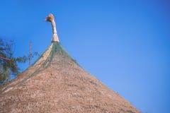 Dak van Bamboehut Royalty-vrije Stock Afbeelding