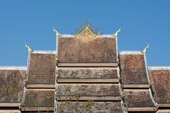 Dak van de Klap van Hagedoornpha Stock Afbeelding