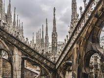 Dak van Duomo in Milaan Stock Fotografie
